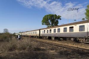 Train in Africa
